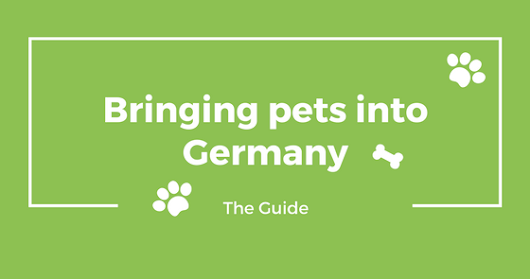 Bringing pets into Germany