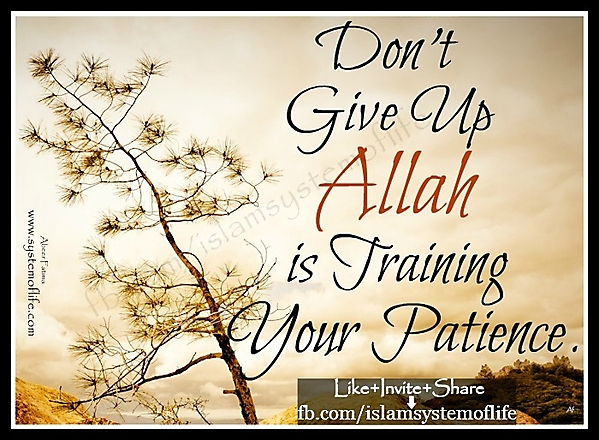 Allah is training your patience - Religions Quotes