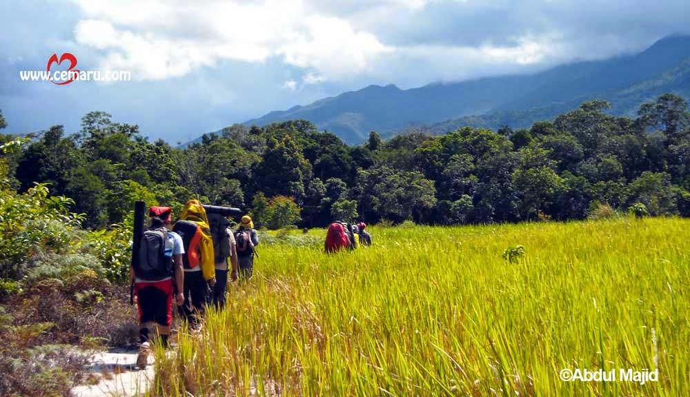 Cagar Alam Laut Kepulauan Karimata