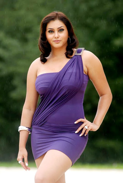 Tollywood Celebties Namitha Profile