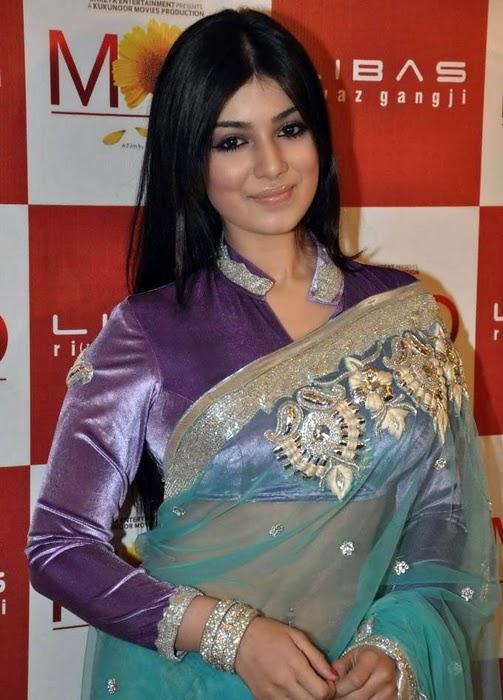 All Stars Photo Site Ayesha Takia In Transparent Saree -8666