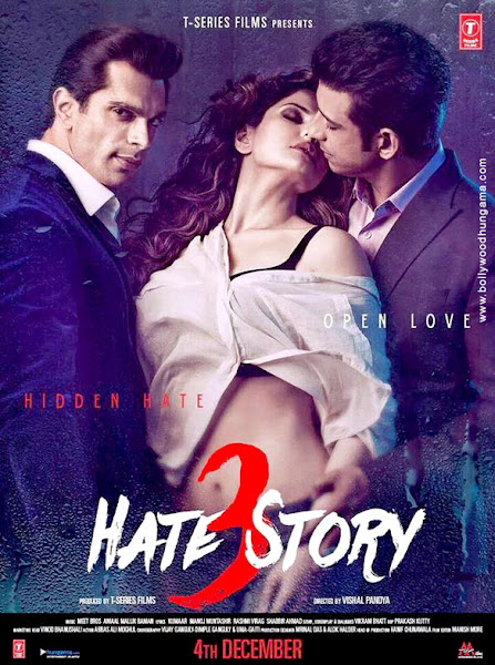 Hate Story 3 (2015) Movie Poster No. 4