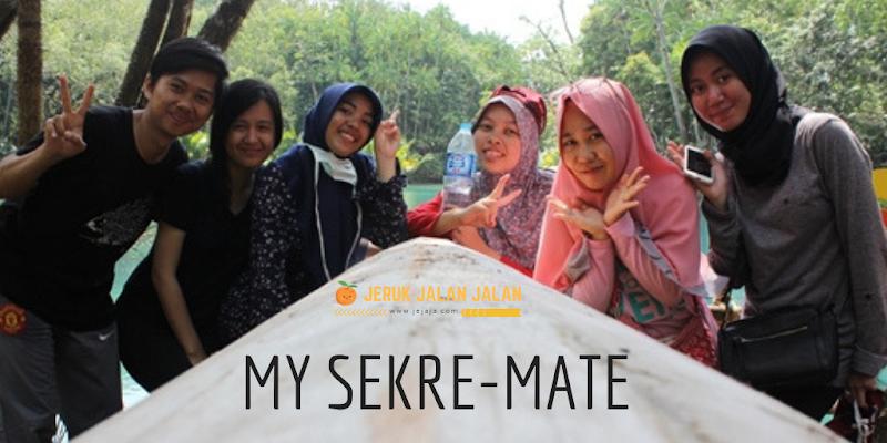 My Sekre-Mate