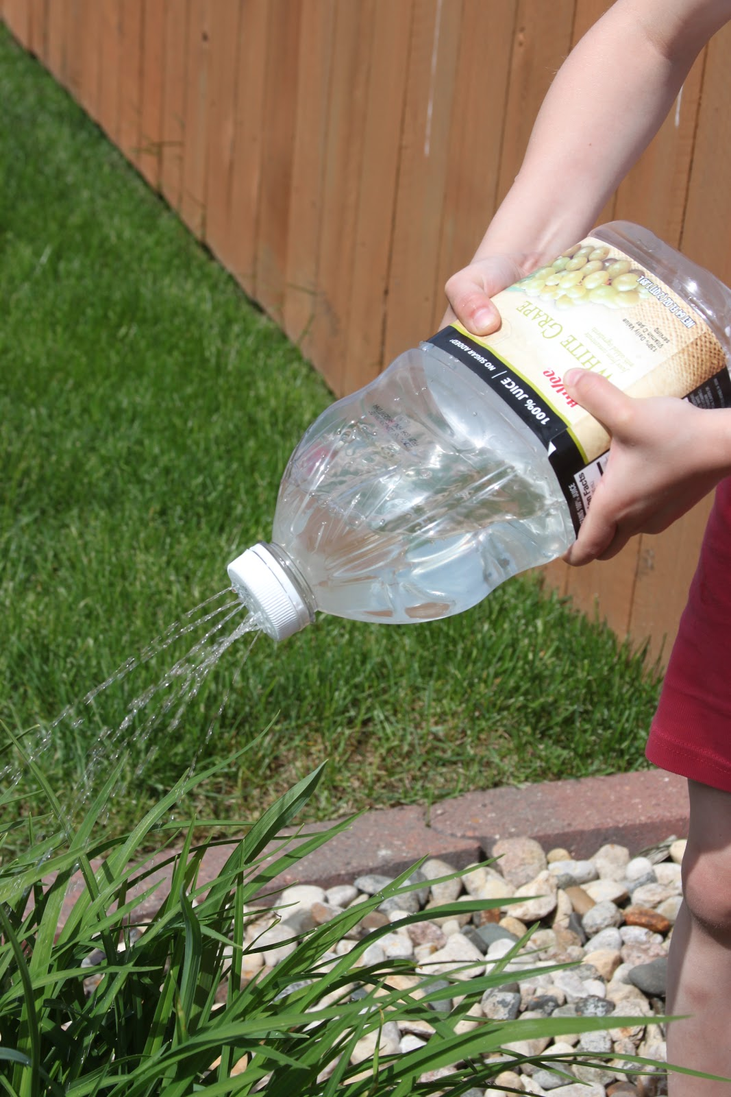 Kara S Creative Place Kids Watering Cans From Plastic Bottles