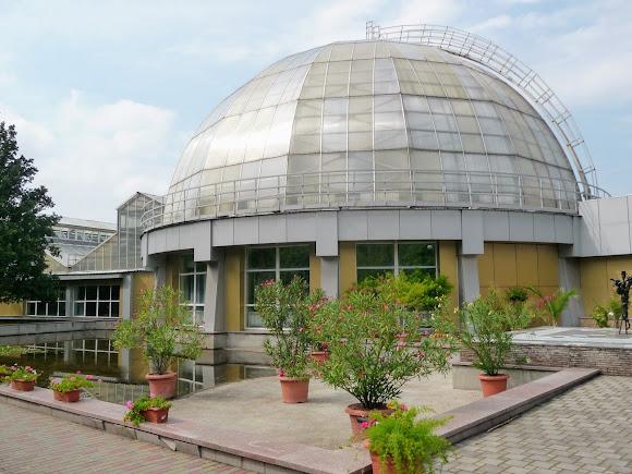 Донецк. Ботанический сад. Коллекция субтропических растений