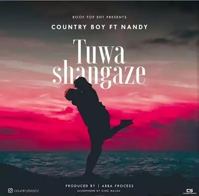 Download Audio   Country Boy ft Nandy - Tuwashangaze
