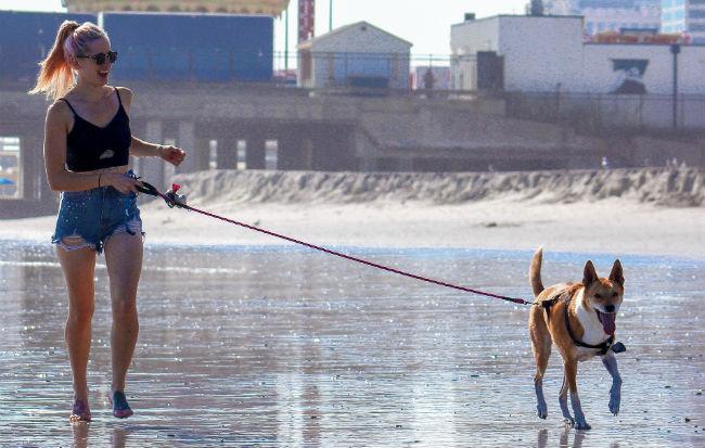 Ragazza che porta il cane a passeggio sulla spiaggia