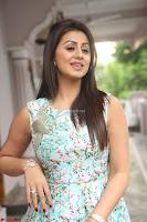 Nikki Galrani at Prema leela pelli gola trailer Launch ~  Exclusive 096.JPG