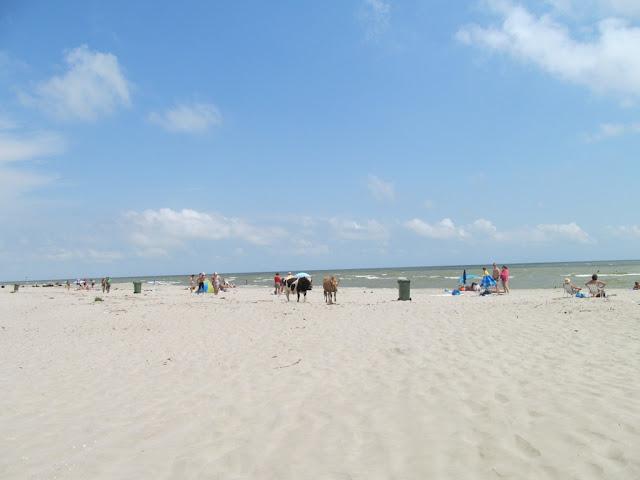 plaja nisip fin sfantu gheorghe