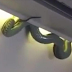 Passengers in an airplane scamper as snake drops out from an overhead locker