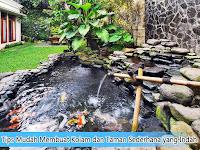 Tips Mudah Membuat Kolam dan Taman Sederhana yang Indah