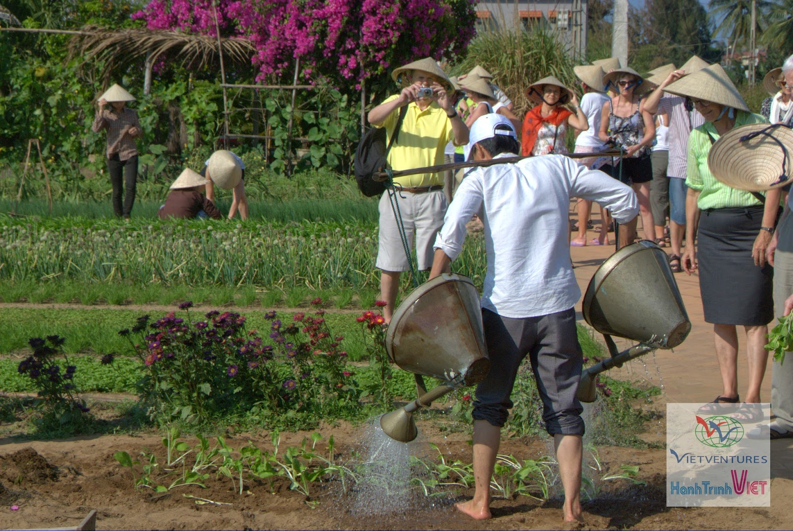 Experience half day being a farmer in Hoian 2015
