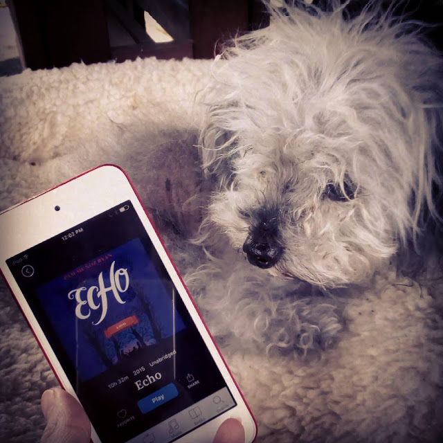 Fuzzy Murchie lies beside a white iPod with Echo's deep blue cover on its screen. The cover features three children seated by a fire between the silhouettes of two bare trees.