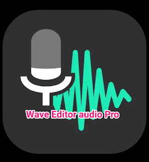 Wave Editor Audio Recorder Android Mod Apk - PulsaApkMod