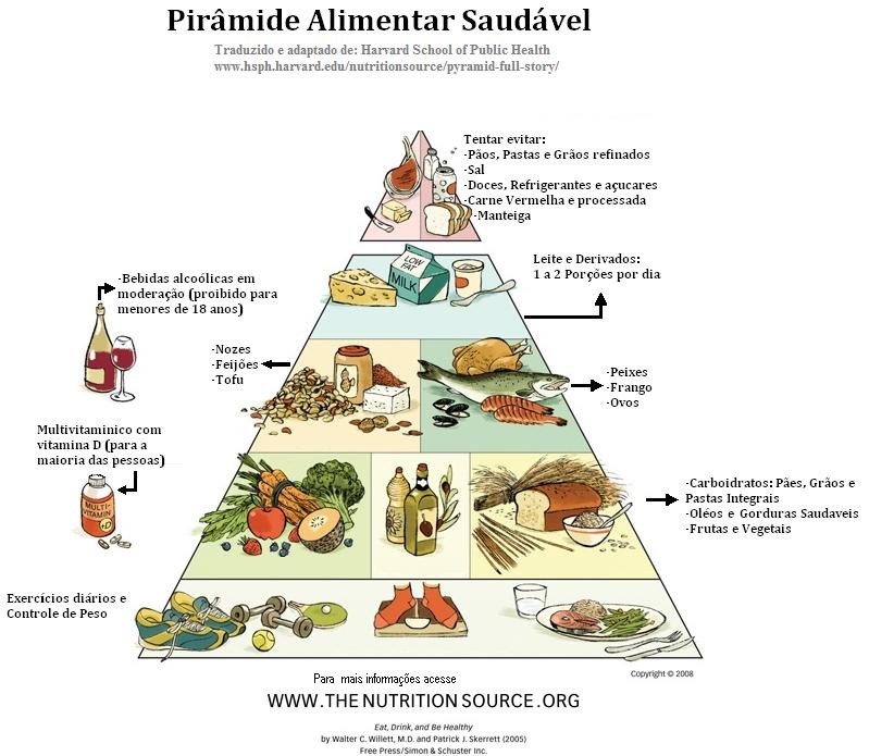 Resultado de imagem para pirâmide alimentar harvard