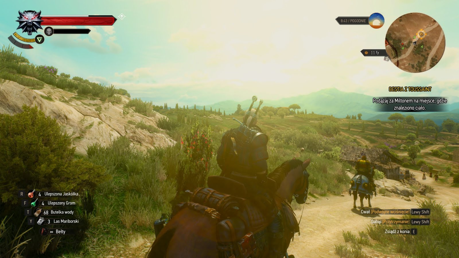 Witcher 3: The Wild Hunt
