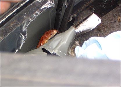 Ngeri, Wanita Ini Melihat Ular Muncul Dari Dashboard Mobilnya, Jangan Pernah Lupa Menutup Kaca Mobil Anda Ya Sobat.