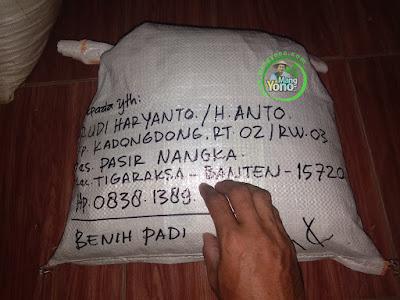 RUDI HARYANTO ( H. ANTO) Tangerang, Banten   Pembeli Benih Padi  CAKRABUANA 02 sebanyak 7,5 Kg.  (Sesudah Packing)