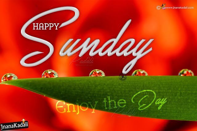 happy sunday images pictures in english, hapy sunday english greetings, best happy sunday wallpapers