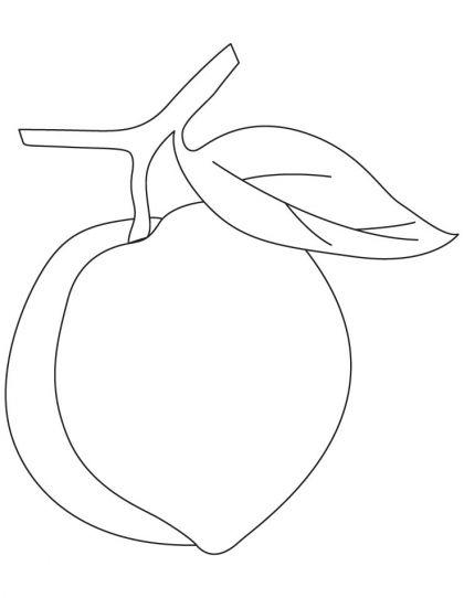 Tranh tô màu quả đào