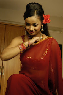 Tanu-Roy-transparent-saree