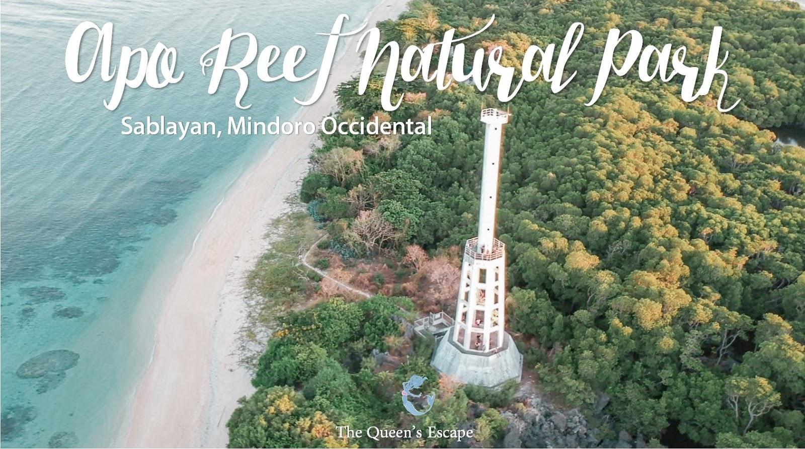 Koop Authentiek officiële leverancier aankomen Apo Reef Natural Park in Sablayan, Mindoro Occidental Travel ...