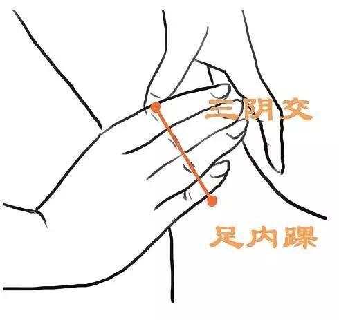 三陰交穴的4種穴位配伍套路,效果不容小覷,祛濕通絡、利水消腫