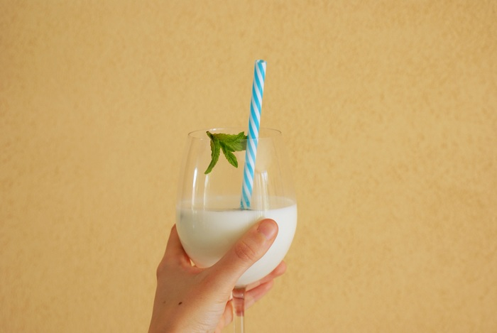 milk mint recipe diy