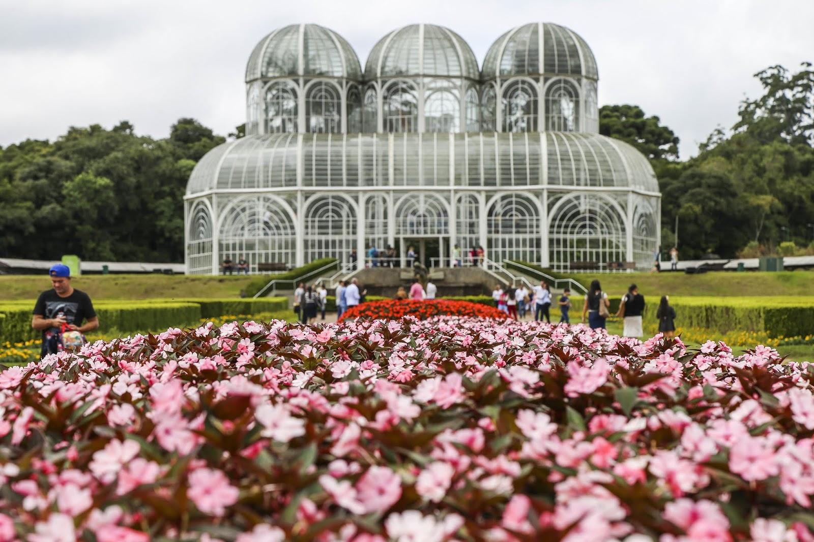 Curitiba ganha flores para o inverno
