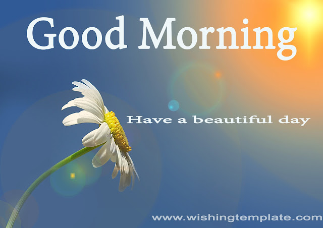 Good Morning image with have a beautiful day