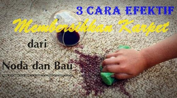 3 Cara Efektif Membersihkan Karpet dari Noda dan Bau