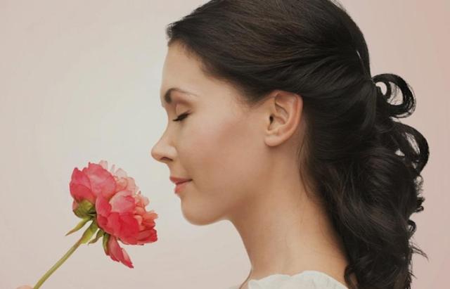 Selain Jadi Lambang Cinta, Bunga Mawar Juga Menyimpan Banyak Manfaat