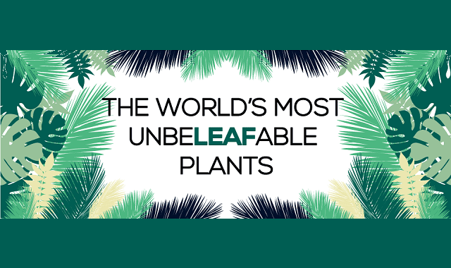 The World's Most Unbeleafable Plants