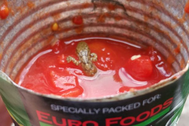 Horrified Couple Find Dead Lizard Inside Canned Tomato Sauce