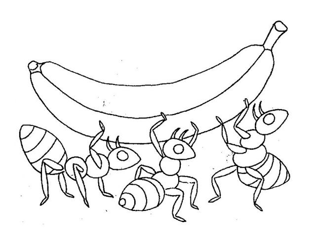 Gambar Mewarnai Semut