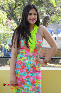 Telugu Actress Prasanna Stills in Short Dress at Inkenti Nuvve Cheppu Press Meet Stills  0090.JPG