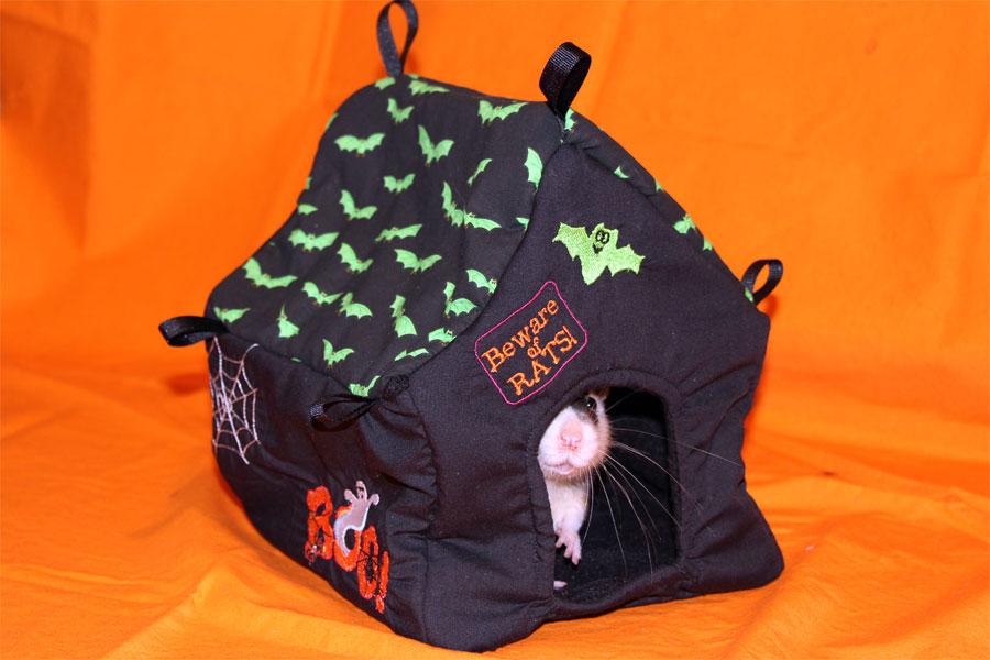 Ratropolis New Hammock Added To Rat Hammock Tutorials