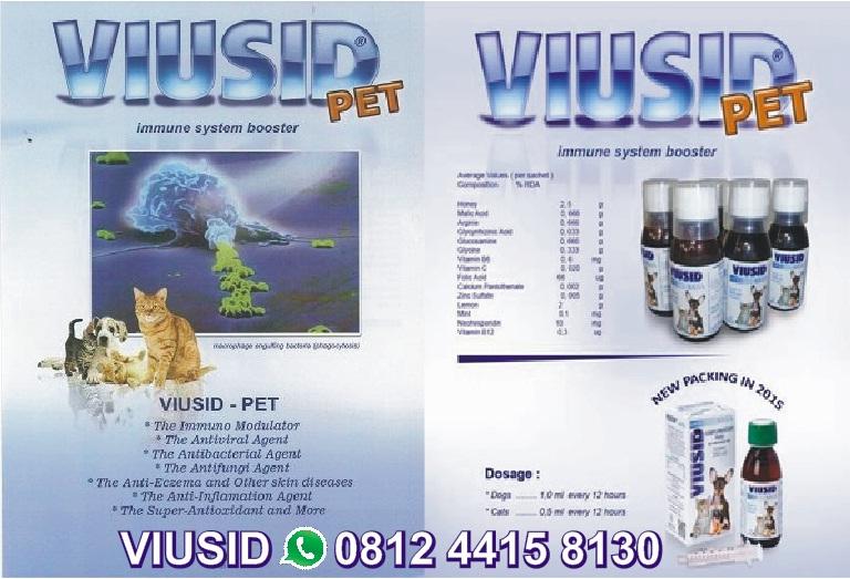 Gambar 13 Penyebab Mengobati Kucing Muntah Ampuh Mania