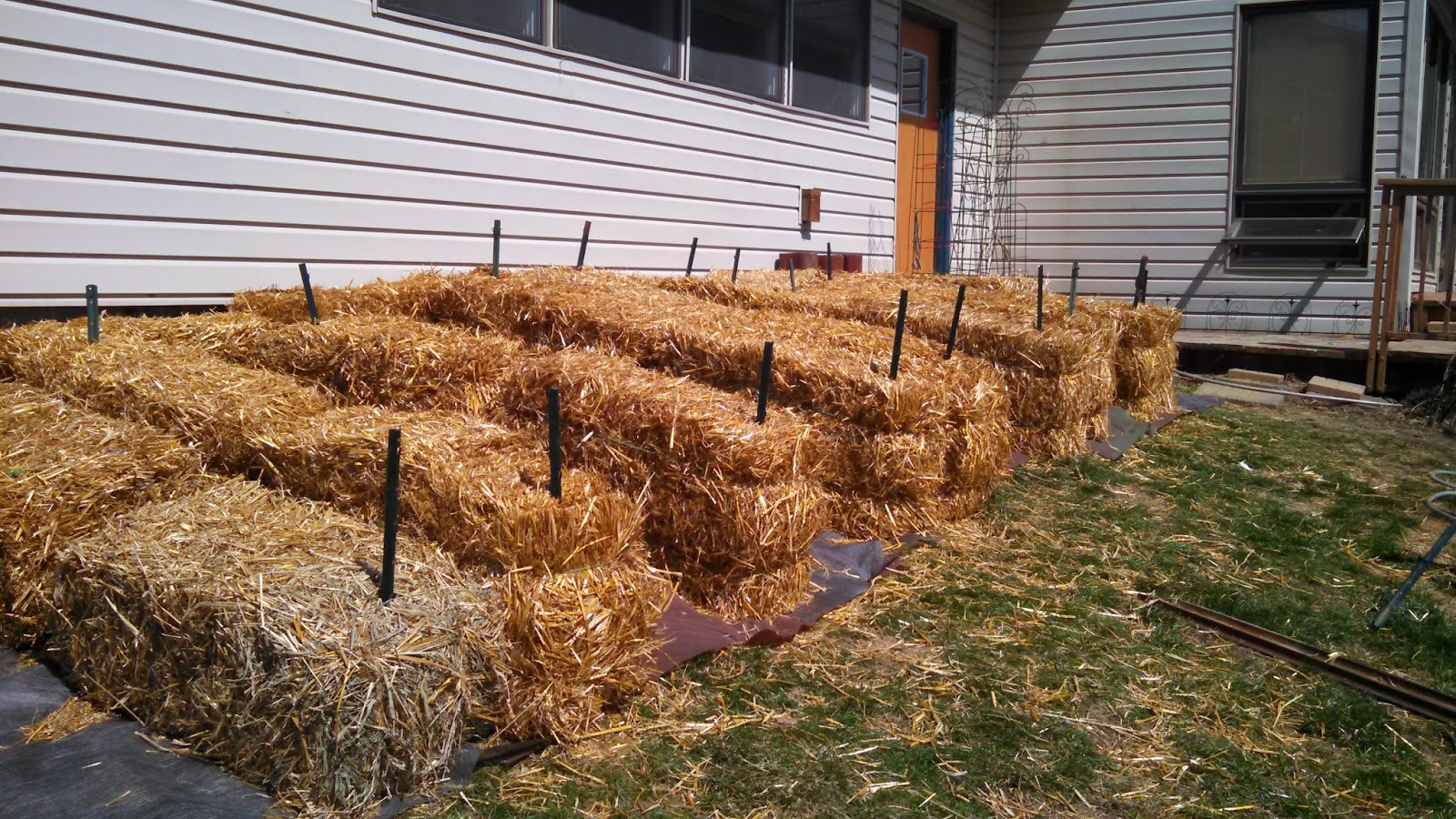 Straw Bales in Place for Straw Bale Garden