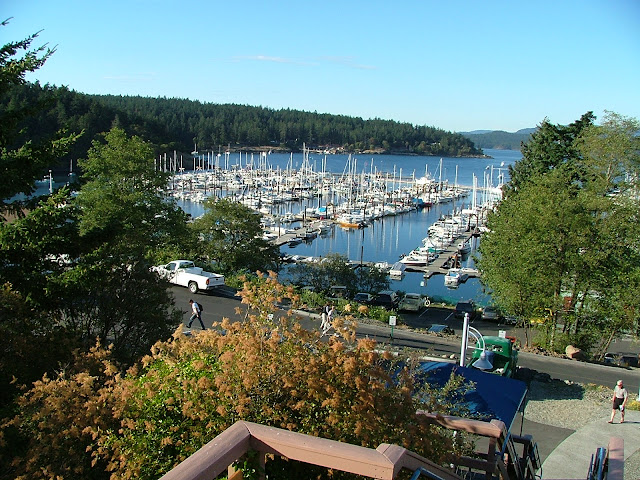 Friday Harbor on San Juan Island from stairway to whale museum