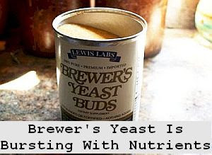 https://foreverhealthy.blogspot.com/2012/04/brewers-yeast-is-bursting-with.html#more