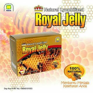 Harga Paket Obat Stroke Produk Nasa Royal Jelly