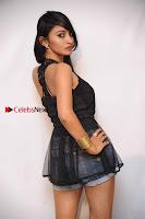 Kannada Actress Shama Taj in Denim Shorts at Engineers Movie Press Meet  0005.jpg
