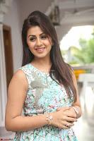 Nikki Galrani at Prema leela pelli gola trailer Launch ~  Exclusive 061.JPG