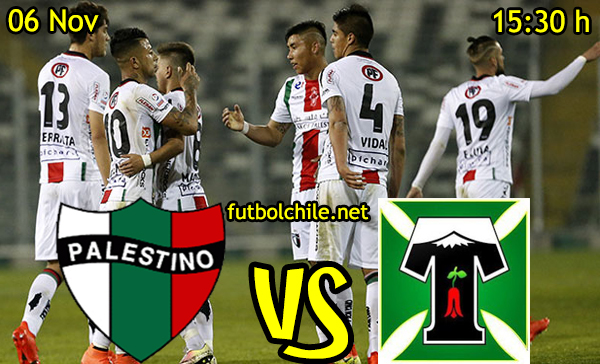 Ver stream hd youtube facebook movil android ios iphone table ipad windows mac linux resultado en vivo, online: Palestino vs Deportes Temuco
