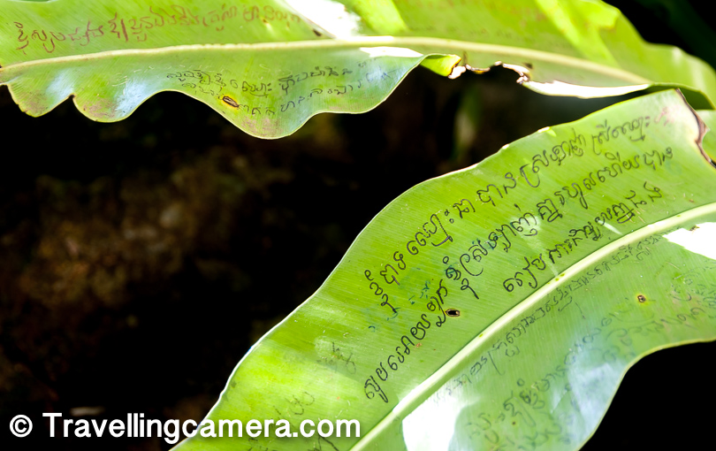 Adding to the beauty are these little prayers, written in Khmer Script, on the leaves of palms. It feels like the prayer wheels - every time the wind blows, these prayers spread around.