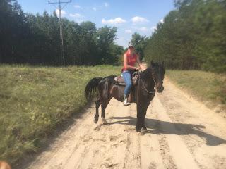 Unkari, El Bronco, laukka, Riitta Reissaa, Horsexplore