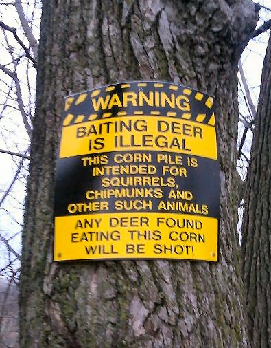 no deer baiting funny sign - deer cant read -image
