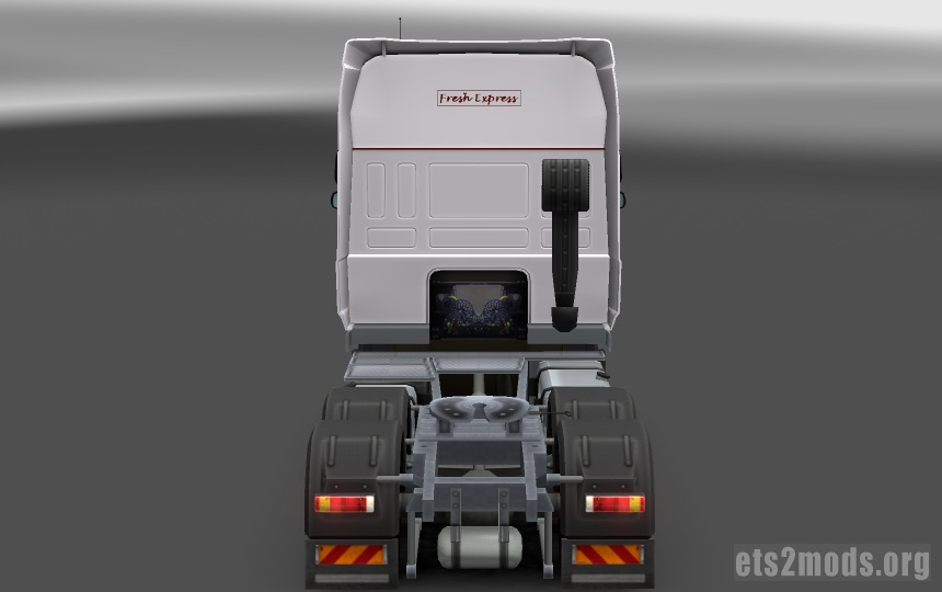 DAF Fresh Express Skin - back view
