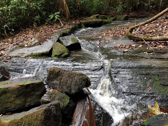 Parque Estadual Guajará-Mirim deve ser aberto para visitação pública a partir de 2018; trilhas verdes e cachoeiras são atrativos
